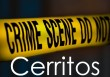 Cerritos Crime Summary May 4-10, 2020