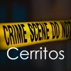 Four Cerritos Burglars Arrested by L.A. County Sheriff's