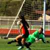 CIF-SOUTHERN SECTION DIVISION 4 GIRLS SOCCER PLAYOFFS :Top-seeded Cerritos falls in overtime on one in a million shot