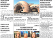October 18, 2019 Hews Media Group-Los Cerritos Community Newspaper eNewspaper